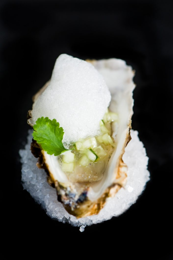fresh oyster at vineum rotterdam