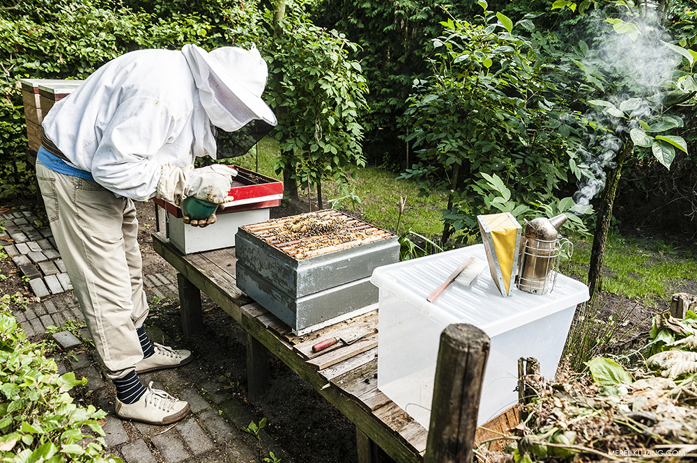 the beekeeper at work