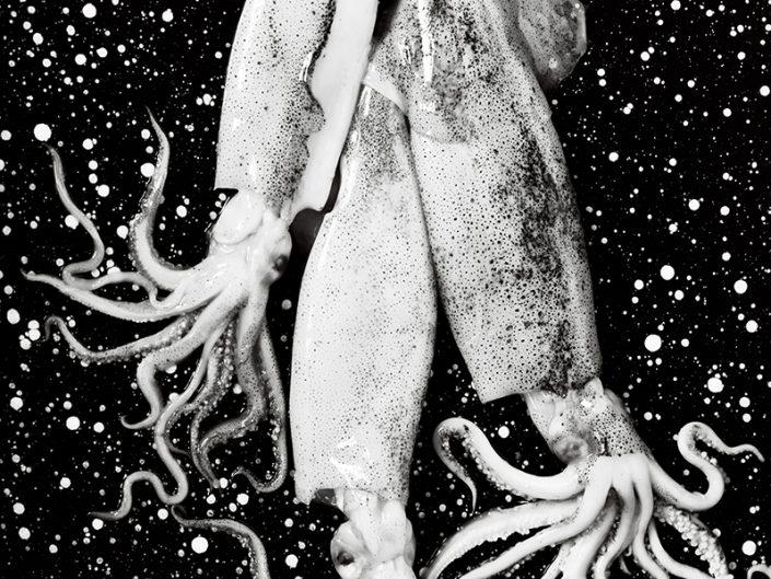 Three squids at restaurant Vineum