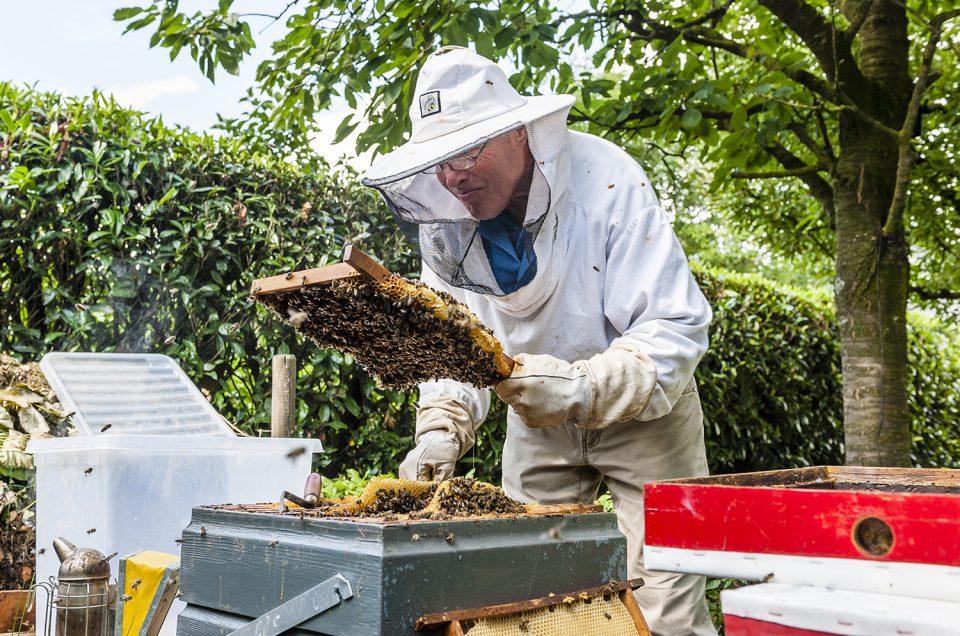 Beekeeper Buzz